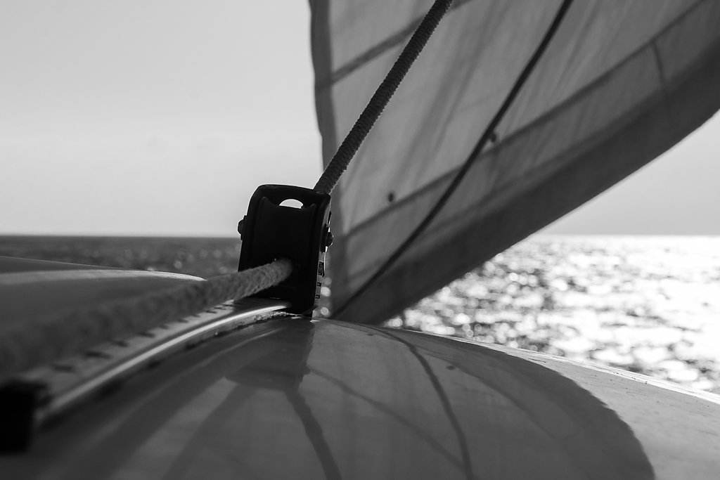 009-Sailing-2012.jpg
